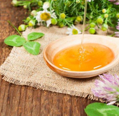 Химия лекарственных растений